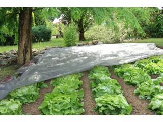 Agrowłóknina wiosenna Pegas Agro P-17 g/m2 - biała