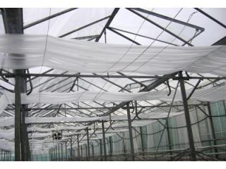 Ekrany energetyczne do podwieszania w tunelach ogrodniczych w celu poprawy warunków cieplnych.